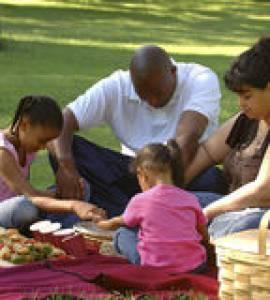 bi-racial-family-picnic-1524720